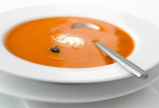 Vegetable-soup-with-fly