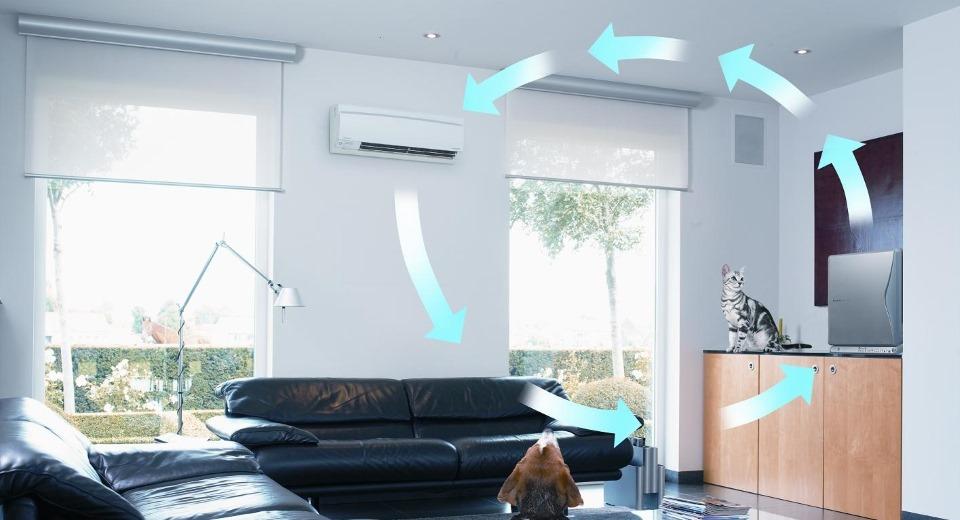 Топ 5 вопросов и ответов: чистый воздух в доме