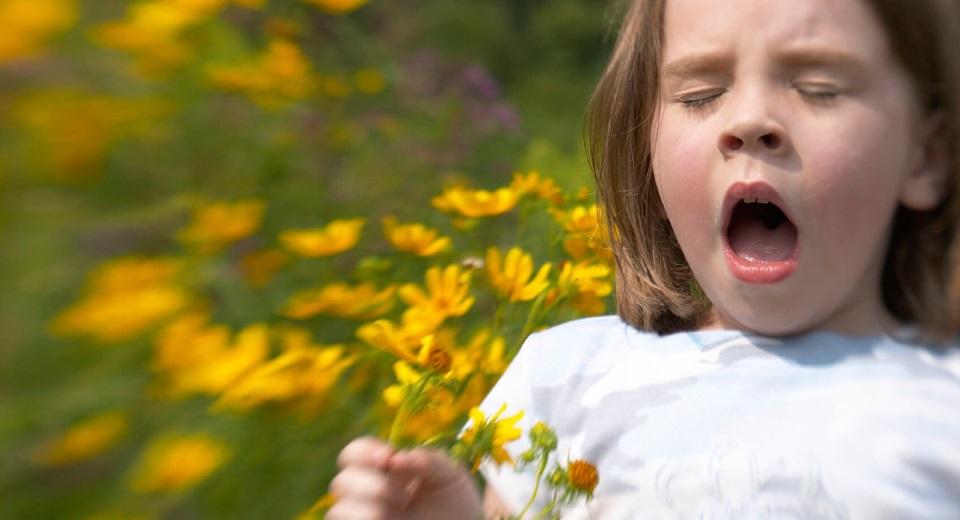 Аллергия весной: задача - выжить