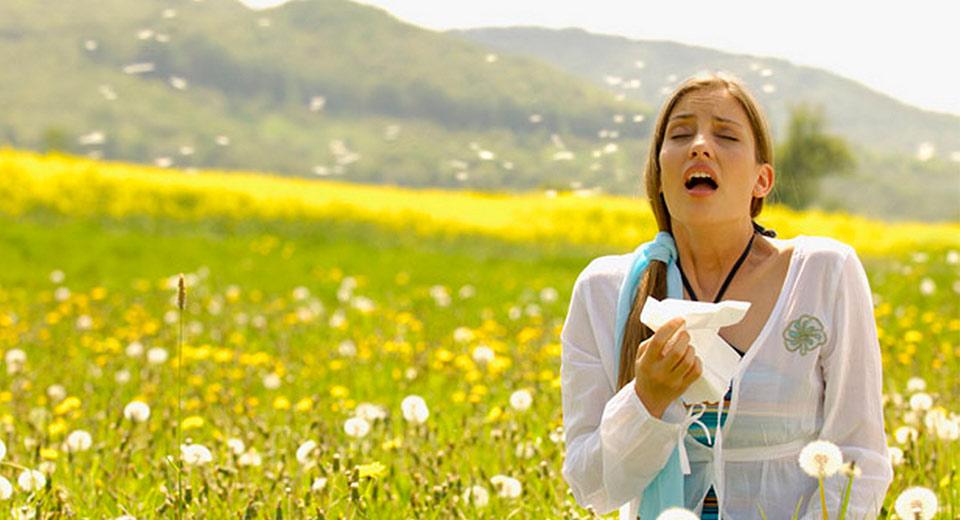 Нежные чувства: аллергия и ее симптомы