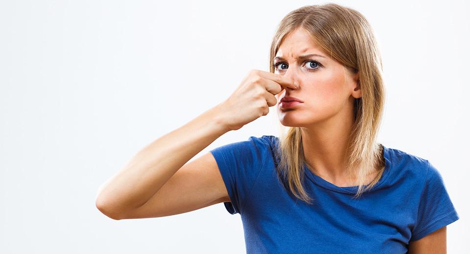Война носов: как избавиться от запаха сырости?