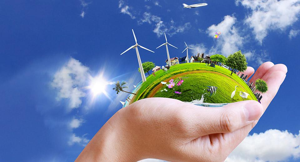 Загрязнение окружающей среды: экологические проблемы природы