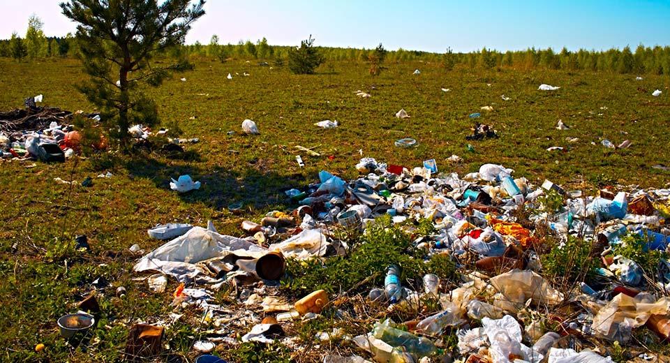 Замърсяване на почвата