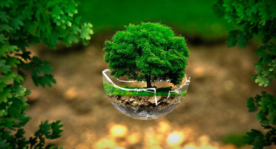 Как сохранить природную чистоту и предотвратить загрязнение природы?