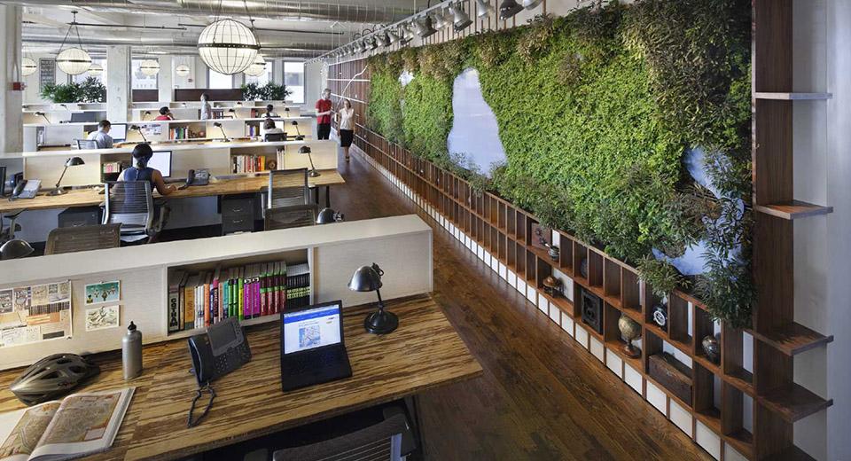 Оборудование Tion для «зеленых офисов»