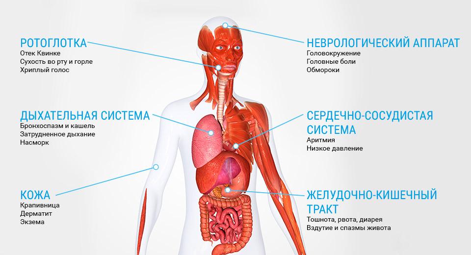 Аллергическая симптоматика. Как распознать аллергию