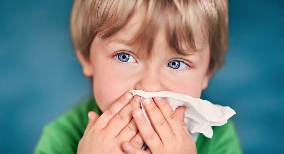 Почему ребенок часто болеет простудой thumbnail