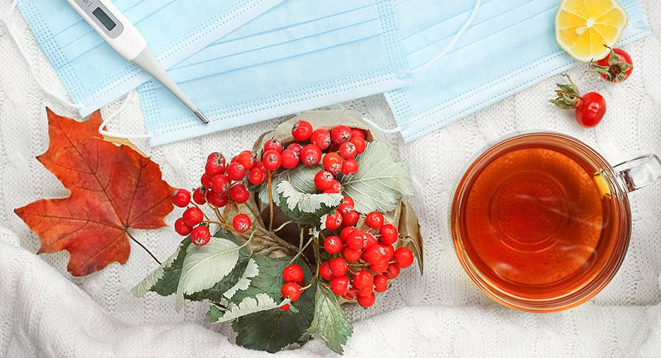 Микроклимат против вируса сезонного гриппа, ОРВИ и коронавирусной инфекции